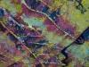 20121120-dsc_0243