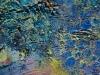 20121120-dsc_0248_0